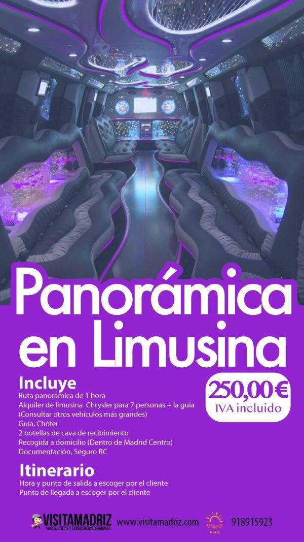 Panorámica en Limusina