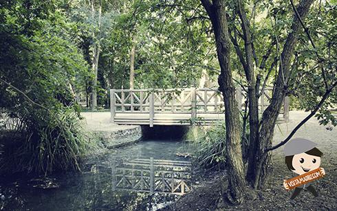 Jardin del Príncipe de Aranjuez